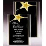 Gold Star Acrylic Plaque