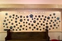 Humane Society Paws Wall