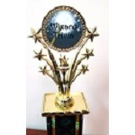 Wizard Trivia Magic Wand Trophy